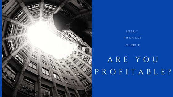 Building a Profitable Business: Input, Process, Output